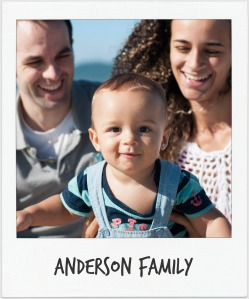 anderson blog button