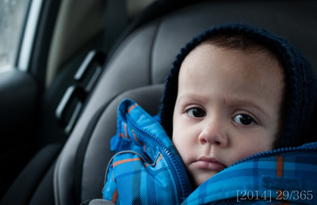 he has his serious moments.  Nikon D300s || 40mm || f 3.2 || 1/320