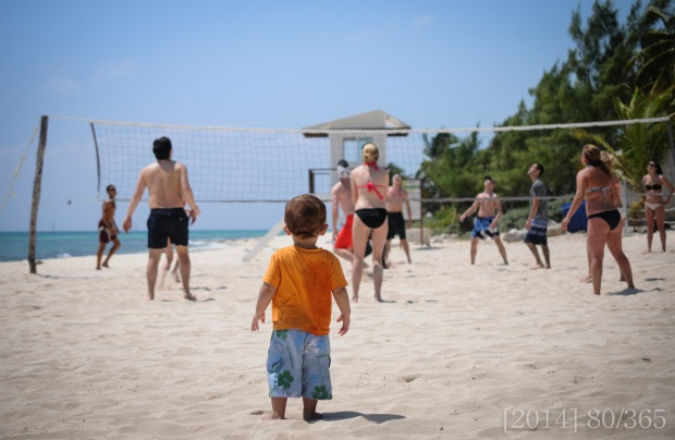 Shasta watching Nuni play volleyball