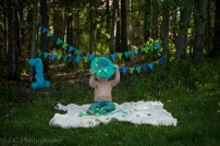 Aiden Cake Smash blog-13