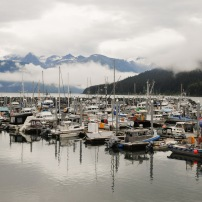 Skagway was all about trains; Haines was all about boats!