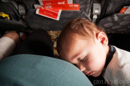 Shasta did well on the flights. He slept most of both of them, which is what I hoped for :)