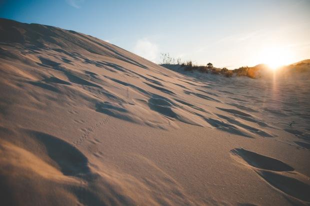 april 11 2015 sand dunes-2