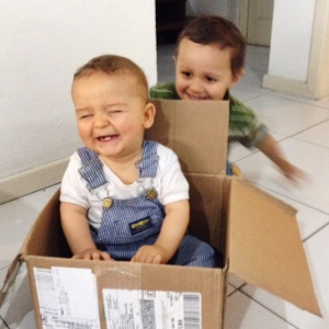 The boys loved the box!
