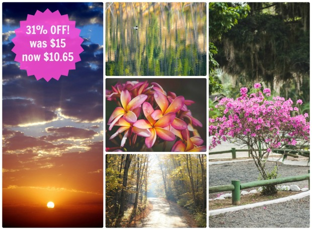 bright and beautiful notecard set SALE